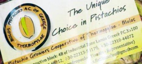 Γεωπόνο ζητά ο Συνεταιρισμός Φιστικοπαραγωγών Μώλου