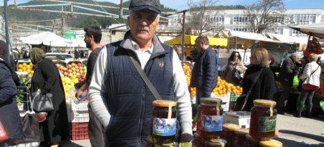 Νίκος Φυτόπουλος: «Πρέπει να παραδειγματιζόμαστε από τη δουλειά που κάνουν οι μέλισσες»