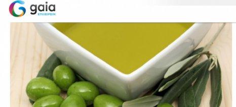 Μια ιστοσελίδα ειδικά για τους εξαγωγείς τροφίμων από την Gaia Επιχειρείν