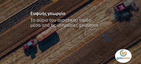 Ημερίδα για την «ευφυή» γεωργία στο Άργος τη Δευτέρα
