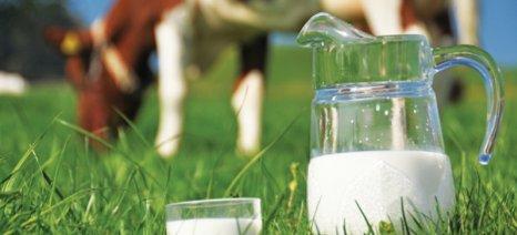 Ημερίδα επιχειρηματικότητας για προϊόντα με βάση το γάλα