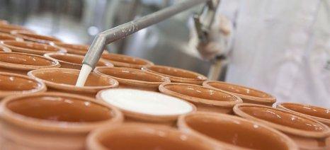 Τα τυροκομικά πρωταγωνιστές των εξαγωγών σύμφωνα με μελέτη του ΣΕΒΕ