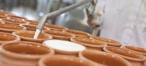 Απλοποιείται η διάθεση οικοτεχνικών γαλακτοκομικών προϊόντων