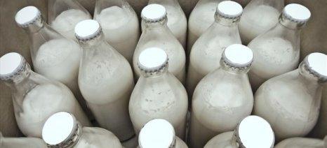 ICAP: Μόνο το φρέσκο γάλα κέρδισε έδαφος το 2014