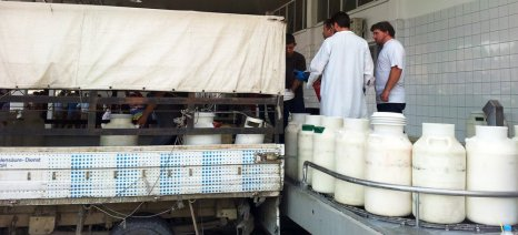 Σταθερά ανοδικά κινούνται οι διεθνείς τιμές γάλακτος τους τελευταίους μήνες