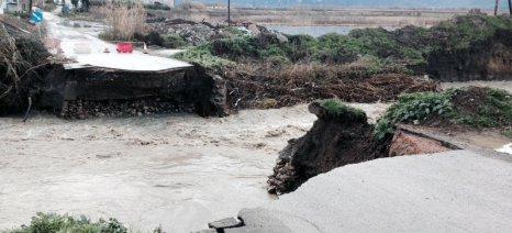 Φουσκώνουν τα ποτάμια της κεντρικής Ελλάδας: Αγρίεψαν ο Σπερχειός και ο Πηνειός