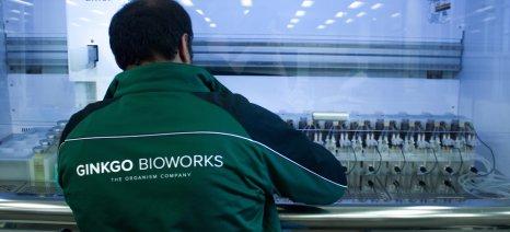 Επένδυση 100 εκατ. δολ. της Bayer με τη Ginkgo Bioworks για έρευνα στο μικροβιακό φορτίο των φυτών