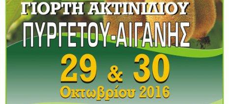 Γιορτή Ακτινίδιου στο Δήμο Τεμπών στις 29 και 30 Οκτωβρίου