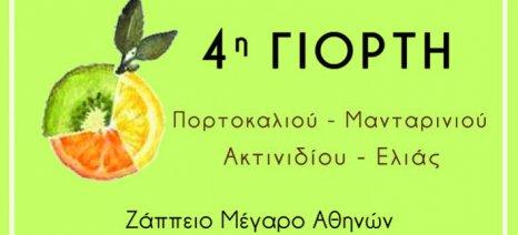 Στο Ζάππειο την Παρασκευή 24 Νοεμβρίου η 4η Γιορτή Πορτοκαλιού, Μανταρινιού, Ακτινιδίου και Ελιάς