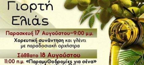 Ξεκινούν αύριο οι τετραήμερες εκδηλώσεις της γιορτής ελιάς στη Δράκεια Πηλίου