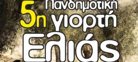 Στις 24-25 Νοεμβρίου η 5η Πανδημοτική Γιορτή Ελιάς στο δήμο Τεμπών