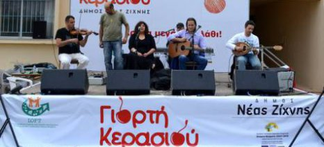Γιορτή κερασιού στο Γάζωρο: Με μεγάλη επιτυχία οι εκδηλώσεις παρά τον άσχημο καιρό