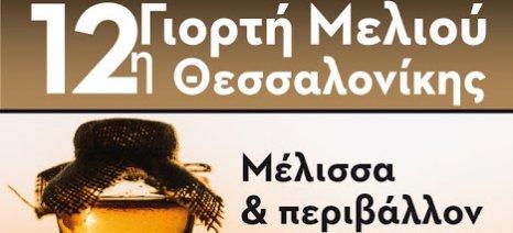 Αρχίζει σήμερα στη Θεσσαλονίκη η 12η Γιορτή Μελιού