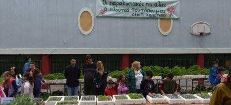 Στις 21 Απριλίου η «Γιορτή των Σπόρων» του Πελίτι στην Κομοτηνή