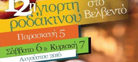 Από 5 έως 7 Αυγούστου η 12η Γιορτή Ροδάκινου στο Βελβεντό