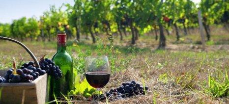 Προώθηση του κρητικού κρασιού στο Όσλο