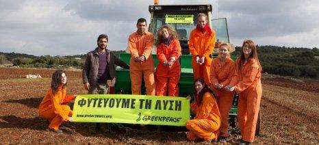 Ενημέρωση για το κτηνοτροφικό λούπινο από την Greenpeace στη Δορκάδα