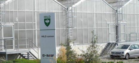 Τους σπόρους κηπευτικών HILD, που απέκτησε το 2019, πούλησε η BASF στη γαλλική Graines Voltz