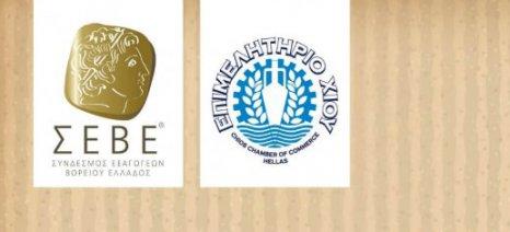Ημερίδα στη Χίο στις 29 Ιουνίου για την εξωστρέφεια των επιχειρήσεων