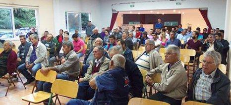 Ημερίδα για το Xylella fastidiosa πραγματοποιήθηκε στην Κρέστενα