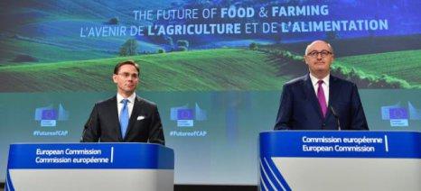 Νέα προσέγγιση Χόγκαν: Τα κράτη μέλη θα αποφασίζουν τα μέτρα που τους ταιριάζουν καλύτερα για τις αγροτικές επιδοτήσεις