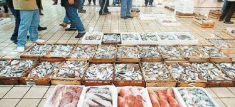 «Πράσινο φως» από την Commission για εισαγωγές αλιευμάτων από την Ταϊβάν