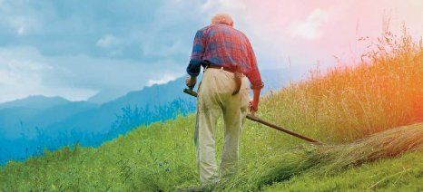 Από το 2017 οι νέοι συνταξιούχοι που συνεχίζουν να είναι ενεργοί αγρότες θα παίρνουν κατά 60% λιγότερη σύνταξη
