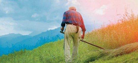 Συμφωνία Ευρωπαϊκής Ένωσης - Mercosur: Να μην ξεχνάμε τους αγρότες και τους ιθαγενείς