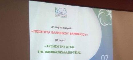 Εσπερίδες σε Λάρισα, Αλίαρτο, Σέρρες και Ορεστιάδα για την εθνική στρατηγική της βαμβακοκαλλιέργειας