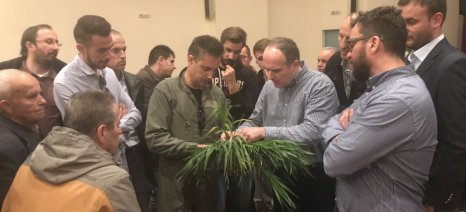 Οι καλλιεργητές της Λάρισας ενημερώθηκαν για τις μυκητολογικές ασθένειες των σιτηρών από τον δρ. Ευ. Βέλλιο