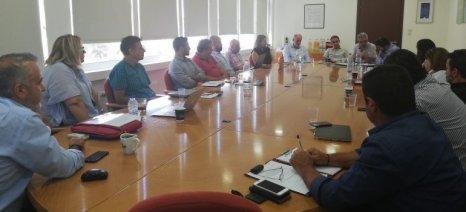 Agro4Crete: Δράση για την έρευνα στον αγροδιατροφικό τομέα της Κρήτης