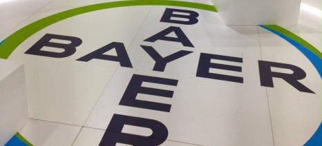 H Bayer Ελλάς συνεχίζει έμπρακτα να βάζει τον Έλληνα παραγωγό στο επίκεντρο των εργασιών της