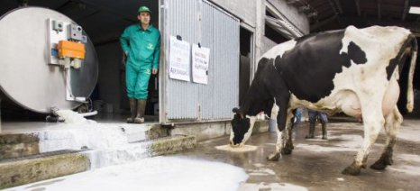 Μπλόκο σε 20 γαλακτοβιομηχανίες στη Γαλικία από κτηνοτρόφους