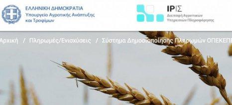 Με τους κωδικούς του Taxisnet θα πληροφορούνται πλέον οι αγρότες για το ποιες επιδοτήσεις έχουν λάβει