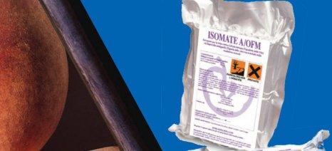 """Οι εγκεκριμένες φερομόνες για όσες ροδακινιές έχουν ενταχθεί στο """"Κομφούζιο"""""""