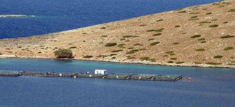 Στο ΦΕΚ η υπουργική απόφαση Τσιρώνη για αξιοποίηση της υδατοκαλλιεργητικής δυναμικότητας