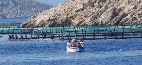 Θεσμοθέτηση στην Πιερία της πρώτης Περιοχής Οργανωμένης Ανάπτυξης Υδατοκαλλιεργειών (ΠΟΑΥ) στην Ελλάδα