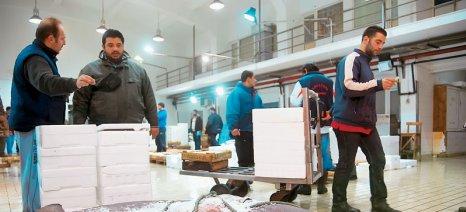 Χάνουν μερίδιο τα ελληνικά ψάρια στη Γερμανία
