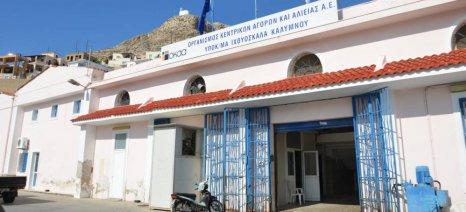 Την Κάλυμνο θα επισκεφθεί στις 19 Ιανουαρίου ο Αποστόλου, μετά από πρόσκληση του τοπικού αλιευτικού συλλόγου