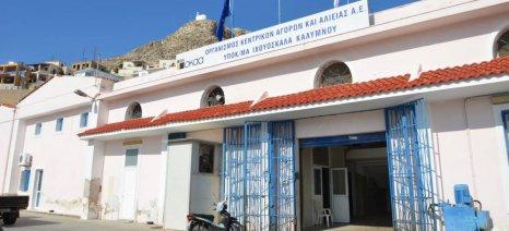 Στη γενική συνέλευση του Αλιευτικού Συλλόγου Παράκτιας Αλιείας-Ξιφία Καλύμνου θα συμμετέχει ο Αποστόλου