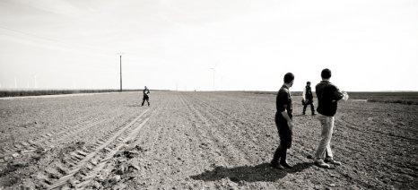 Ποιοι και πώς εντάσσονται στο καθεστώς των Νέων Γεωργών που δίνει +25% αυξημένα δικαιώματα ενίσχυσης