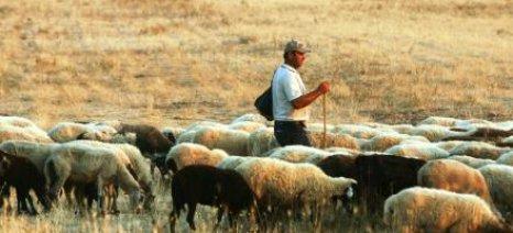 Συνάντηση με το υπουργείο ζητούν οι κτηνοτρόφοι της Κρήτης για την ενεργοποίηση των δικαιωμάτων