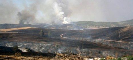 «Κόκκινος» συναγερμός για την καύση σιτοκαλαμιών στο θεσσαλικό κάμπο