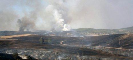 Πράξη κάνει ο ΟΠΕΚΕΠΕ τη μείωση κατά 3% της ενίσχυσης σε όσους αγρότες έκαψαν πέρυσι τις σιτοκαλαμιές