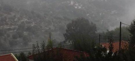 Σοβαρές ζημιές από το χαλάζι σε ελιές και πορτοκαλιές στη Λακωνία