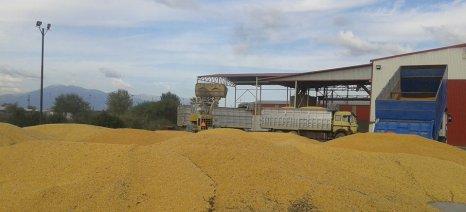 Αυξήθηκε κατά 3,5% η συνολική αγροτική παραγωγή της Ελλάδας το 2015, σύμφωνα με τη Eurostat