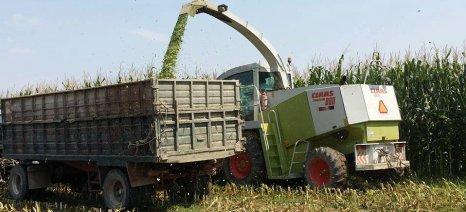 Αρνητικές οι επιπτώσεις στην ευρωπαϊκή παραγωγή καλαμποκιού από τη διατλαντική συμφωνία