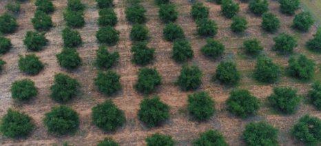 Δωρεά 24,5 εκατ. ευρώ του Ιδρύματος Σταύρος Νιάρχος για τη δημιουργία θέσεων εργασίας στον αγροτικό τομέα