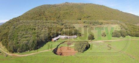 Κρατήρας πολλών μέτρων από καθίζηση δίπλα σε στάβλο, στο Καλπάκι Ιωαννίνων (βίντεο με drone)