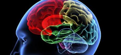 Εντοπίστηκε το πρώτο γονίδιο που ευθύνεται για τον οικογενειακό καρκίνο του εγκεφάλου